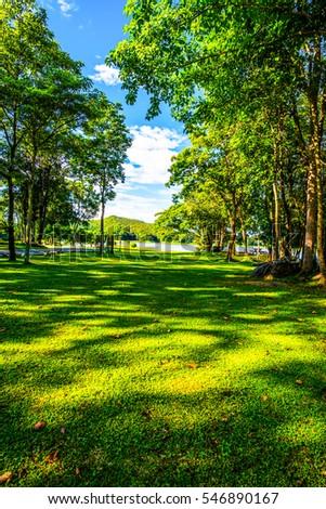 Landscape View of Mae Puem National Park, Thailand. #546890167