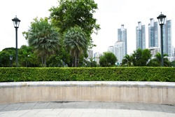 Landscape view of park with building background in city