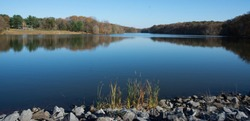 Landscape view of reflected trees in mirror surface of lake with reeds and stones in foreground on sunny day Fall Seneca state Park Maryland United States