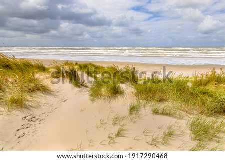 Landscape view of sand dune on the North sea coast near Wijk aan Zee, Noord Holland Province, the Netherlands. Landscape scene of european nature. Stockfoto ©