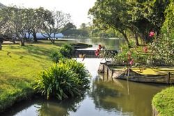 landscape view of the pond in the garden at King Rama 9 Park in Bangkok Thailand