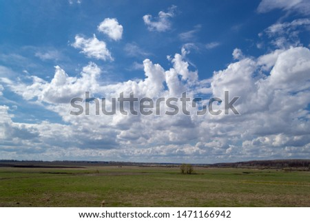 Landscape view to the horizon. Spring green plain with white cumulus clouds above it.  #1471166942