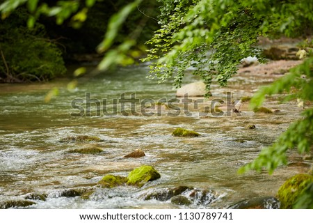 Landscape with a river flowing through deciduous forest #1130789741