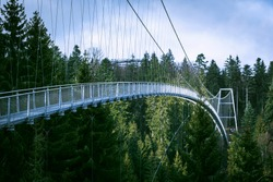 Landscape with a suspension bridge in the Black Forest National Park near the city of Bad Wildbad, Germany. Metal bridge over the top of the tree.