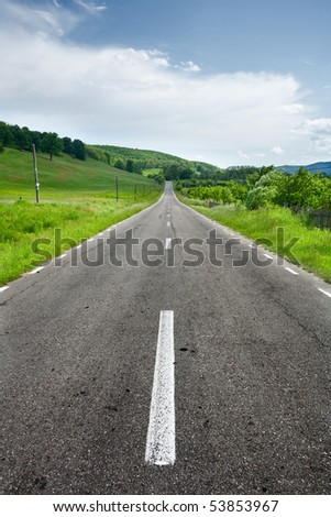 Landscape with an empty road going through an oak forest