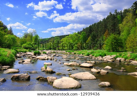 Landscape with calm river with stones, vivid green forest banks and bright blue sky.