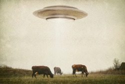 Landscape with cows and UFO. Photo with 3d rendering element and vintage film camera effects