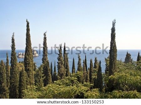 Landscape with cypress grove in the foreground