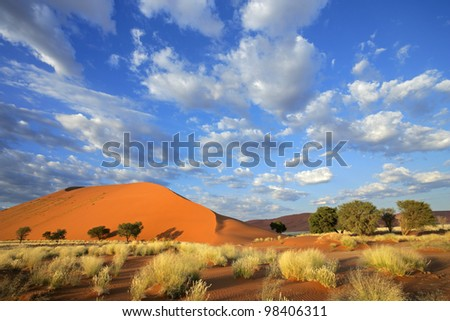Landscape with desert grasses, large sand dune and sky with clouds, Sossusvlei, Namibia, southern Africa