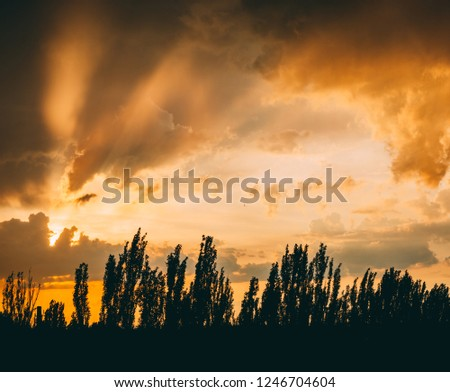 Landscape with dramatic light - beautiful golden sunset with saturated sky and clouds. #1246704604