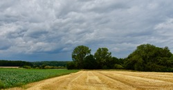 Landscape with field of wheat and threatening sky in Flemish Brabant, Belgium