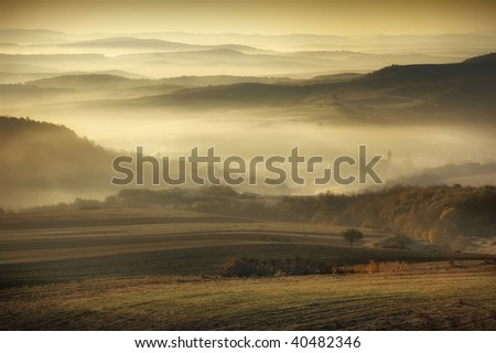 landscape with fog