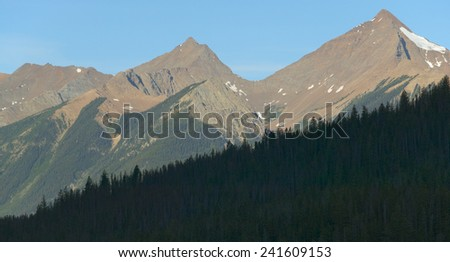 Landscape with forest in British Columbia. Field. Canada. Horizontal