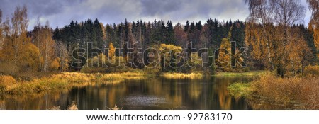Landscape with forest lake in autumn rainy day