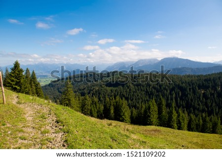 Landscape with forest mountains. Nature.