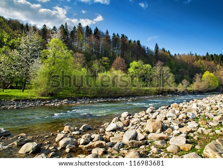 Landscape with forest, river and stones