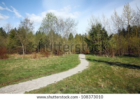 landscape with grass,blue sky and road