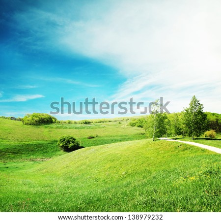 Landscape with green grass and trees in the sun