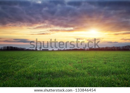 Landscape with green meadow and sun. Sunset. Composition of nature.