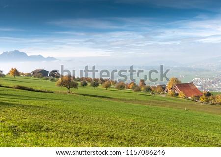 Landscape with Green meadows above Lake Lucerne, near mount Rigi, Alps, Switzerland #1157086246