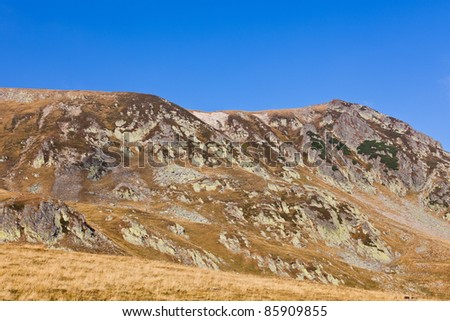 Landscape with Iezer peak of Parang mountains in Romania, in summer