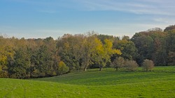 Landscape with Meadows and forests on the rolling hills of Flemish ardennes on a sunny autumn day near Ronse, Belgium