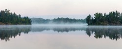 landscape with morning fog in the forest lake