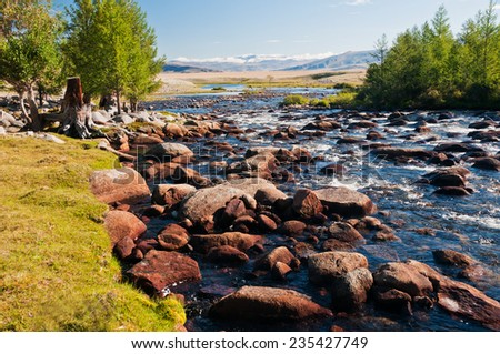 landscape with mountains trees and a river with stones  in front