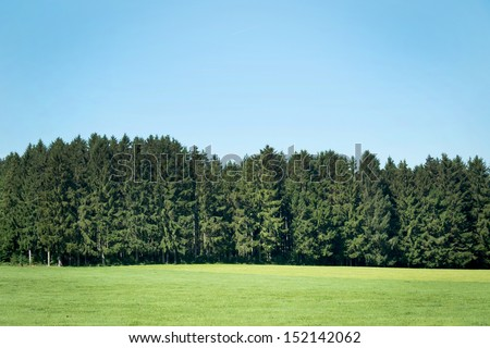 Landscape with pine forests #152142062