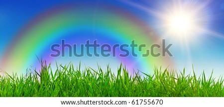 Landscape with rainbow in the warm summer weather. Nice background.