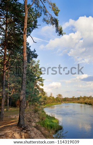 Landscape with river and autumn forest