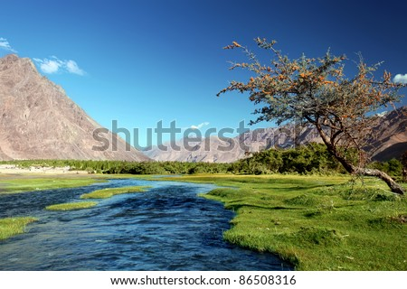 Landscape with river and green valley in Himalayas. Nubra valley. India