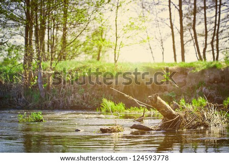 Landscape with river and tree
