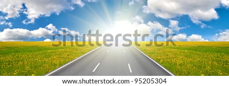 landscape with road and yellow dandelions field #95205304