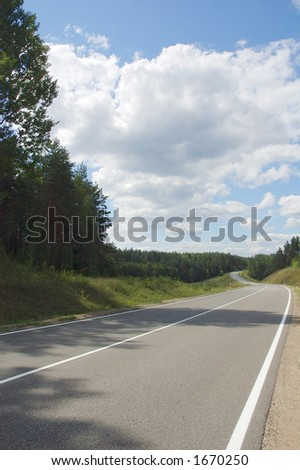 landscape with road in the forest