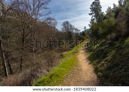 Landscape with rural path near Cañamero. Extremadura. Spain.