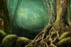 Landscape with shady forest, old trees, weird roots and mossy stones