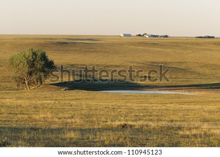 Landscape with tree by pond - stock photo