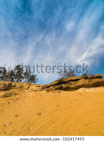Landscape with trees and rocks on the sand in late autumn