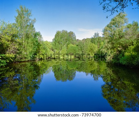 Landscape with trees, reflecting in the water #73974700
