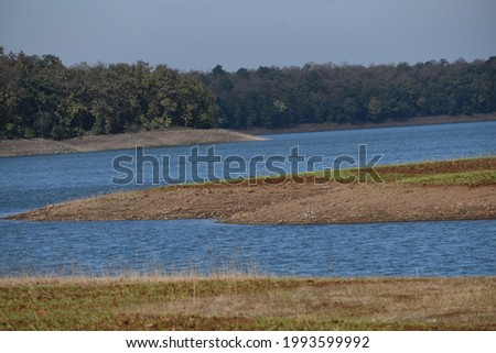 landscape with water, tree and greenary.
