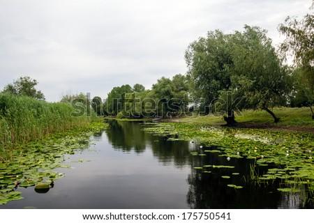 Landscape with waterline from  Letea village, in the Danube Delta area, Romania