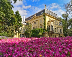 Landscape with yellow baroque house surrounded by green trees and a field of pink blossomed flowers in the middle of Sofia, Bulgaria