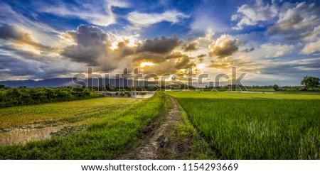 landscapes golden hour and blue hour #1154293669