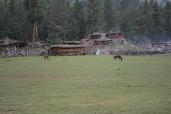 landscapes of fairy meadows and nanga parbat Himalayan mountains