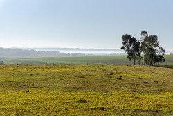 Landscapes of the pampa biome. The pampas are a natural and pastoral region of plains with fields covered by fields located in southern South America, between Brazil, Uruguay and Argentina.