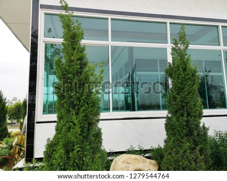 Landscaping in front of the house,Green Trees and plantations #1279544764