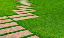 Landscaping lawn with green grass. Curved stone pathway leading through lawn. Path in garden.