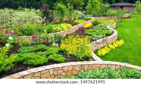 Landscaping panorama of luxury home garden. Scenic view of landscape garden in backyard. Landscape design with plants and flowers at residential house. Scenery of natural landscaped area in summer.