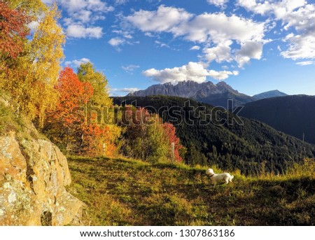 Landschaft Natur Sport #1307863186